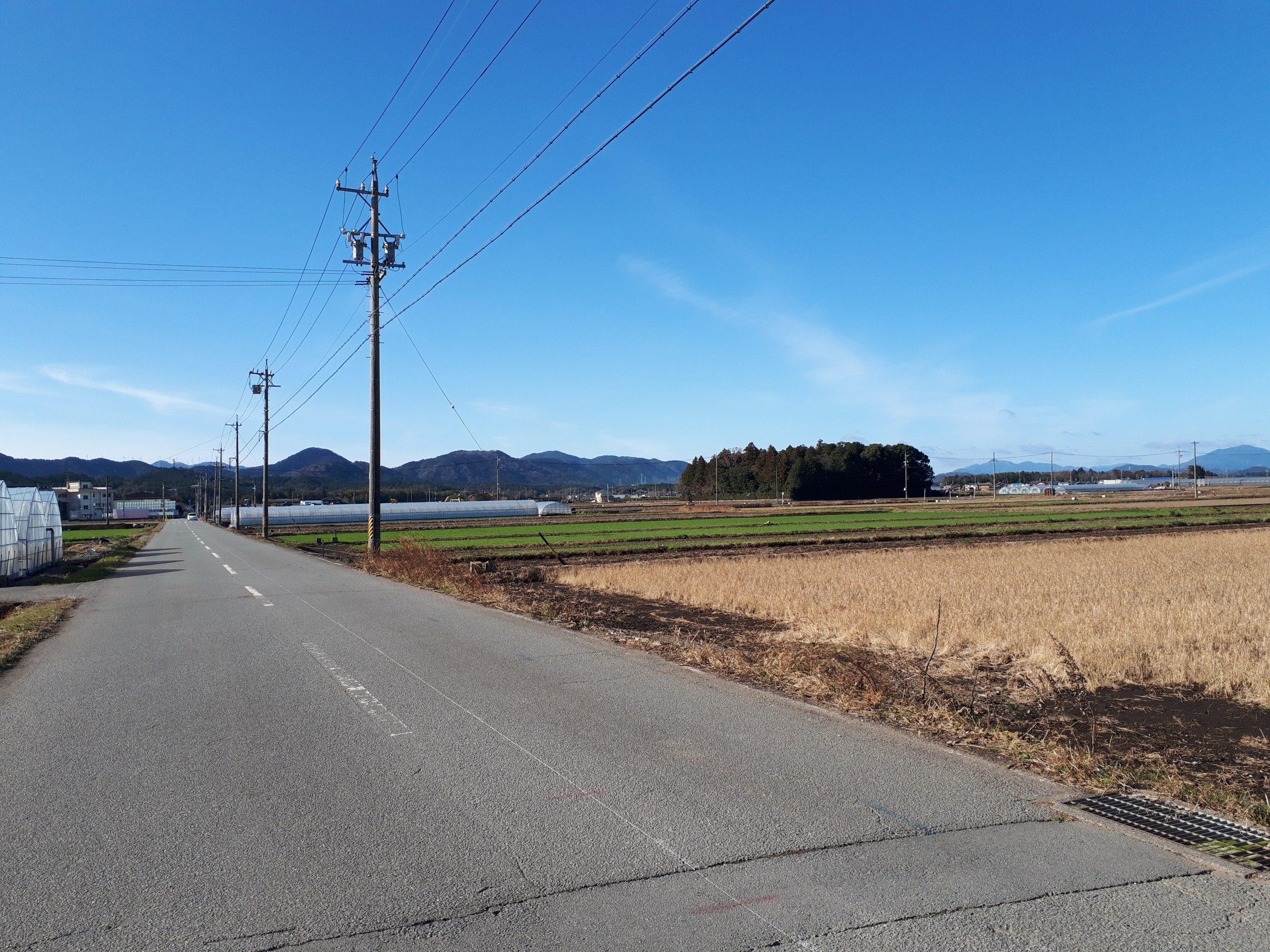 小社神社 遠景