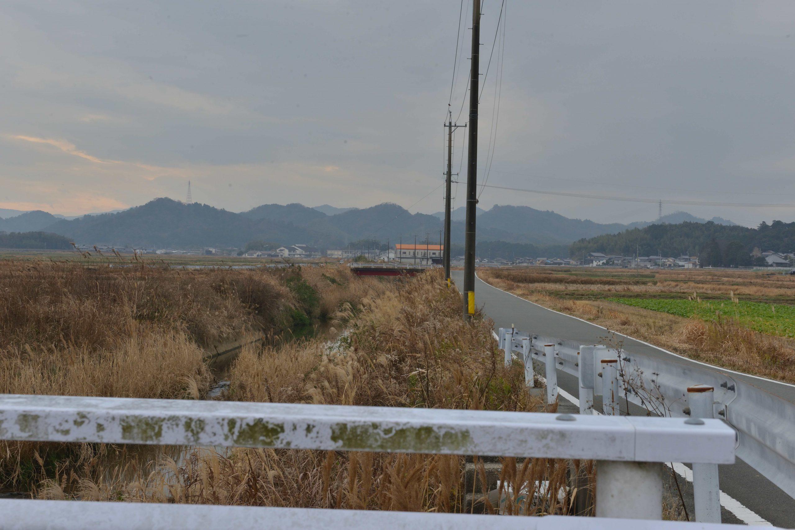 外城田川沿い