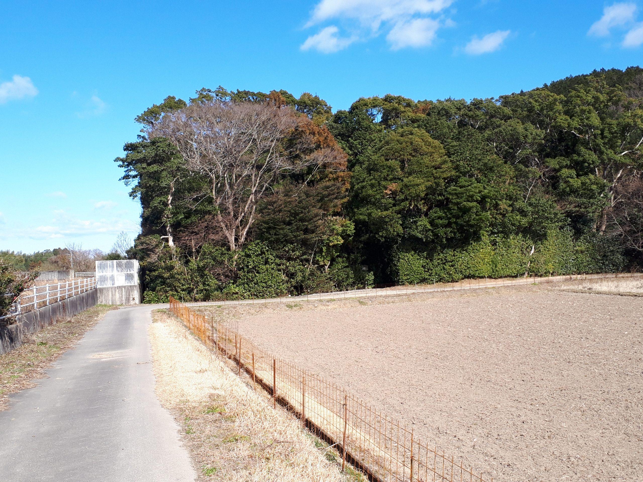 川原神社遠景